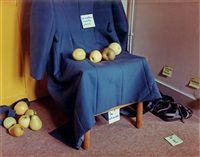 nature morte jeaune by elina brotherus