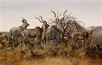kudus in the brush by gary r. swanson