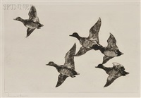 flying widgeon by frank weston benson