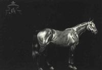 caballo corredor by carlos anesi