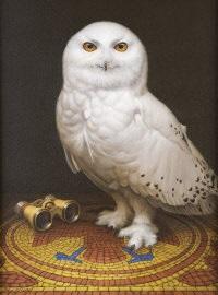 snowy owl by brian mccarthy