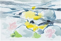 burren, lichen by liam ó broin