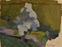 paysage corse by maurice le scouezec