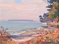 coastal view by manly edward macdonald
