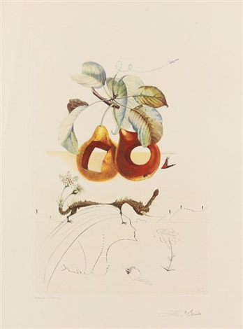 fruits troués, pl.6 (from flordali (les fruits)) by salvador dalí