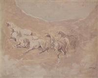 chevaux en liberté by mohamed krich