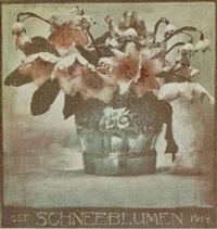 schneeblumen by rudolf koppitz