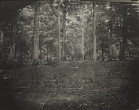 untitled (cold harbor #27) by sally mann