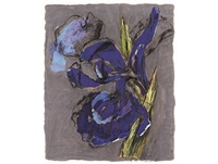 iris by william kentridge