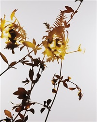 #001 by james welling
