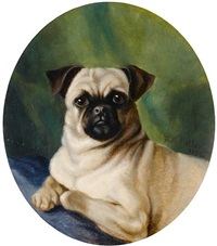 portrait of a pug by h.w. holder