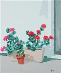 vasi di fiori by alvaro cattaneo