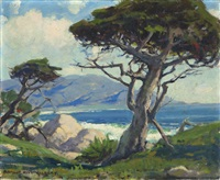 cypress tree, 17 mile drive, monterey by arthur hill gilbert