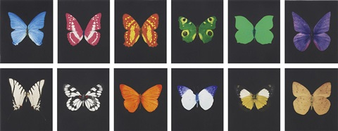 butterfly etching portfolio of 12 by damien hirst