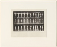 animal locomotion, pl.531 by eadweard muybridge