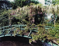 giverny, wisteria covered bridge by stephen shore