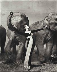 dovima with elephants, evening dress by dior, cirque d'hiver, paris, 1955 by richard avedon