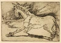 junges pferd by hans grundig