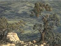 paisaje montañoso by gonzalo ariza