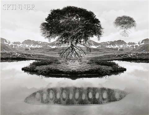 untitled (floating tree) by jerry uelsmann