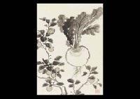 turnip and fruit by zenjiro uda