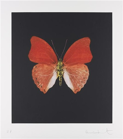 unique orange butterfly by damien hirst