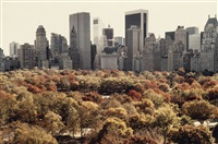 red autumn (central park, new york city) by ruth orkin