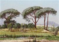 parasol pines, st. raphael by william baptiste baird