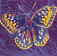 san francisco silverspot, from endangered species by andy warhol