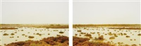 les paradis i and ii (diptych) by elger esser