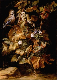 still life with a jay and a starling eating berries by niccolino van houbraken