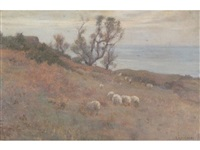 sea view, possibly runswick bay, with cottage and trees, sheep in the foreground by frederick william jackson