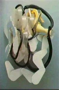 elephant's ear by kenji fujita