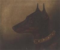 a jack russell terrier by edward aistrop
