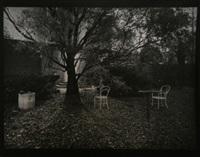 the enchanting garden by josef sudek