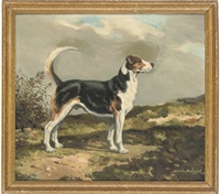 a fox hound in a landscape by joseph appleyard
