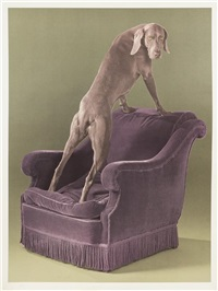 back view by william wegman