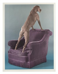 override by william wegman