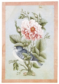 roses et rossignol (gul-o-bulbul) by fursat al-shirazi
