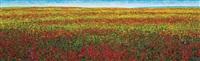 poppy fields by ahn chang-hong