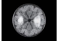 bowl: oeillets by rené lalique