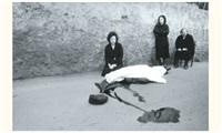 meurtre de benedetto grado, sicile by franco zecchin