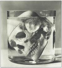 skull in glass by stephane graff
