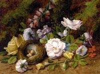 summer flowers and a bird's nest with eggs on a mossy bank by henry j. livens