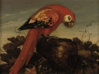 a parrot sitting on a large vegetable, eyeing a small lizard in the foreground by abraham bosschaert