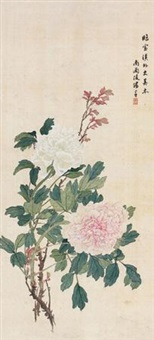 牡丹天香 by tang shishu