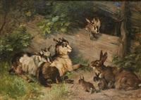 chevreaux et lapereaux dans les bois by julius adam the younger