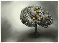 cortex by boyd webb
