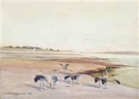 cranes on the banks of the nile by charles whymper