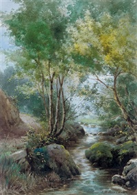 a woodland stream by j.p. buchanan